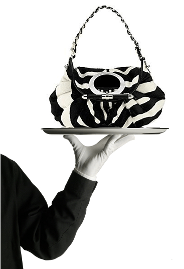 designer bag and purses