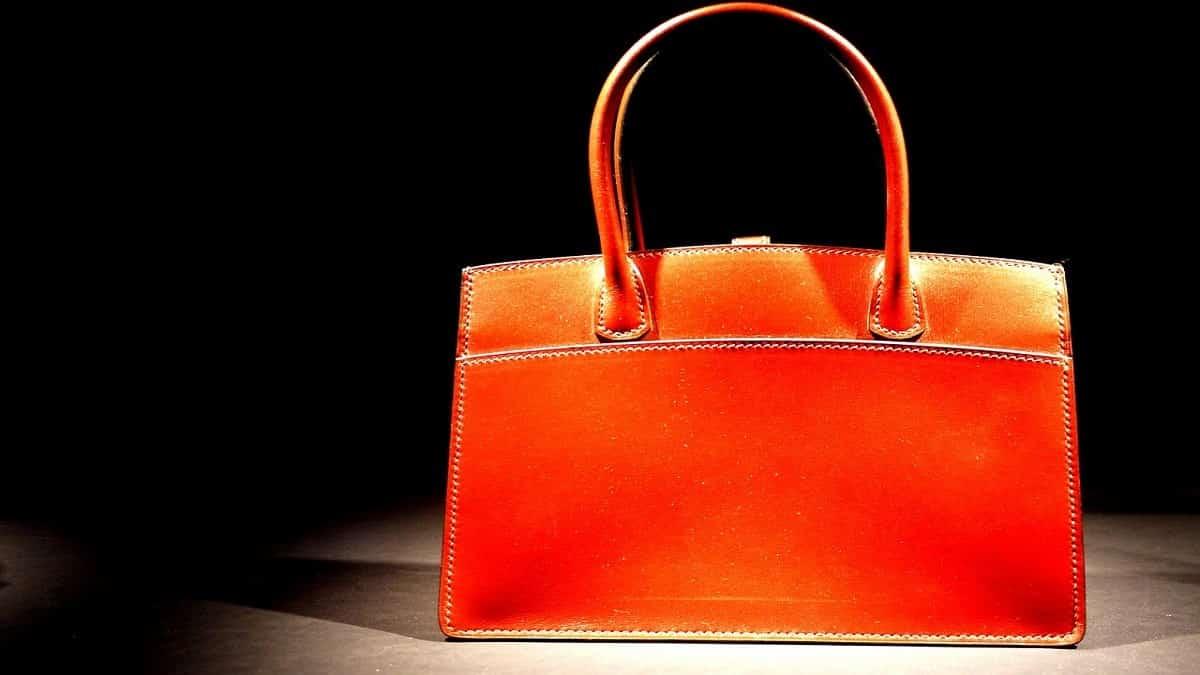 A Cute Orange Handbag