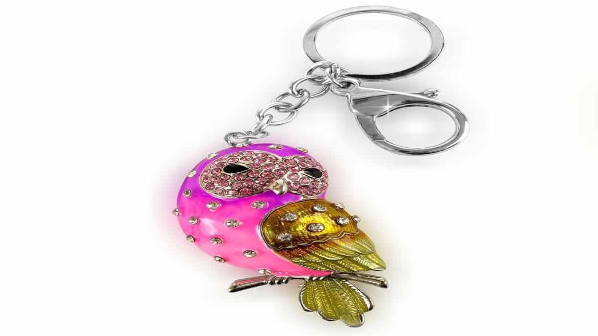Purse charm with a key ring